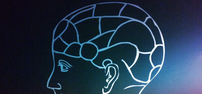 Phrenology brain diagram