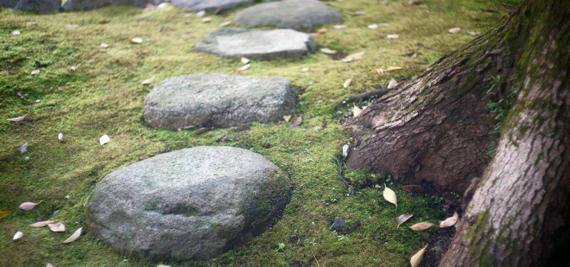 Hiking stepping stones on grass