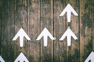 Align your organization's direction